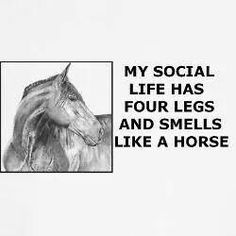 My social life has four legs and smells like a horse.