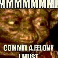 Dankest Memes, Funny Memes, Shrek Memes, Half Elf, Quality Memes, Oui Oui, Cursed Images, Stupid Memes, Stupid Funny