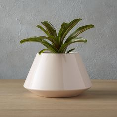 Shop roz small pink planter.   Modern retro form plants a minimalist seed with a clean, tapered shape and beveled base.