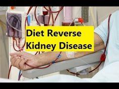 Diet Reverse Kidney Disease - Kidney Disease Natural Cure