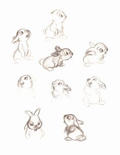 thumper from bambi sketches