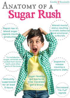 Anatomy of a Sugar Rush... what exactly does sugar do to the body? ~ Sensibly Sustainable Sugar Detox Plan, Sugar Detox Diet, Healthy Kids, Get Healthy, Healthy Living, Eating Healthy, Healthy Food, Effects Of Sugar, Home Detox
