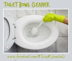 THIEVES TOILET BOWL CLEANER Pour approximately ¼ cup of baking soda and 2 drops of Thieves essential oil blend directly into the toilet bowl. Stir with a toilet brush and let sit for a couple of mi(Bottle Green Essential Oils)