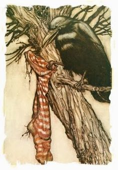 Arthur Rackham art Print: Solomon Caw and the Stocking- from Peter Pan in Kensington Gardens. Illustration by Arthur Rackham Arthur Rackham, Crow Art, Raven Art, Bird Art, Peter Pan Book, Jm Barrie, Quoth The Raven, Jackdaw, Crows Ravens