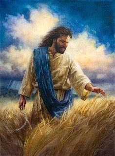 The Lord of the harvest! God and Jesus Christ Jesus Art, Jesus Is Lord, Image Jesus, Pictures Of Jesus Christ, Jesus Christus, Prophetic Art, Biblical Art, Foto Art, Bible Art