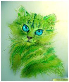 Green cat <3