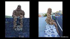Mr Potato Man greets visitors to Vilaflor's Potato Festival.