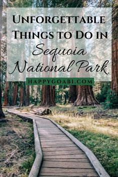 7 Unforgettable Things to Do in Sequoia National Park Going to Sequoia National Park soon? Learn about these unforgettable things to do in Sequoia National Park that you are sure to want to add to your itinerary! Sequoia National Park Camping, Canyonlands National Park, Rocky Mountain National Park, Sequoia Camping, California National Parks, Us National Parks, California Travel, Yosemite Sequoia, Nationalparks Usa