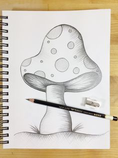 Hi Tombow fans, Beth here to share some really great news! Tombow recently released the brand new MONO Drawing Pencil Set, so I reached back into my college art school memory banks to share some… Sketchbook Drawings, Art Drawings Sketches Simple, Pencil Art Drawings, Doodle Drawings, Cute Drawings, Pencil Drawings For Beginners, Pencil Sketches Simple, Drawing With Pencil, Random Drawings