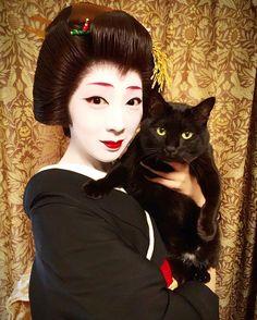 """geisha-kai: """" Geiko Mamesome of Gion Kobu with a cat by aya_tomoda on Instagram """" Geiko Mamesome 豆そめさん from Gion koubu 祇園甲部 with a black cat in Kyoto, Japan - 2016 Source Instagram aya_tomoda"""