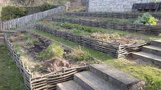 CHATAIGNIER - PLESSIS - RETENUE DE TALUS - CREATION - RETENUE DE BERGE- patager , jardin aromatique, jardin, aménagement