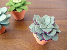 felt succulents. maybe for the office, def w the stupid mini clay pot we still have, unless i actually lossed it.