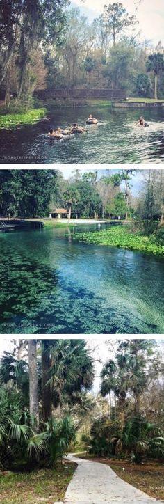 Need a break from Disney? This is Orlando's best hidden gem :)