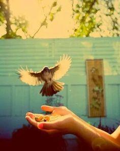 Se ama, para ser feliz!!!