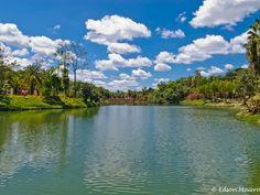 Inhotim: com seus lagos, aves e arvores e flores a Natureza é a principal obra de arte exposta no parque