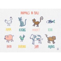 Choose your favorite Bali poster from an amazing collection of Bali Travel Posters, under the sea poster, animal, fruits posters, kites poster etc. Indonesian Language, Indonesian Art, Travel Album, Counting Activities, Animals For Kids, Journal Ideas, Teaching Resources, School Ideas, Bali
