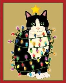1000 Images About Happy Birthday Crazy Cat Lady On