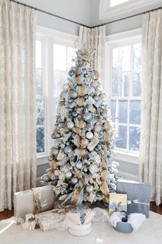 blue & gold tree fro