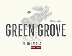 "Check out new work on my @Behance portfolio: ""Green grove // typeface"" http://be.net/gallery/55211723/Green-grove-typeface"