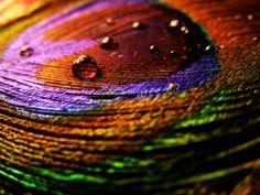 Des couleurs pour la semaine #2