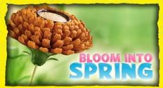 FREE Bloomin' Onion at Outback
