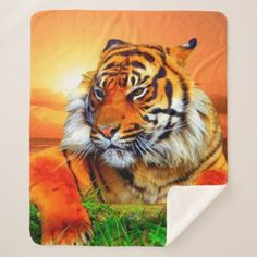 Pre- Order  Pre-order today! Your design will be made and shipped as soon as our manufacturers are ready to begin production.  Sumatran Tiger Sherpa Blanket  $77.27  by ErikaKai  - cyo diy customize personalize unique