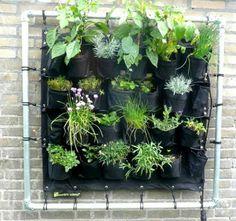CYNTUINEN TUINONTWERP & -ADVIES: Eetbare wand: de kruidentuin voor aan de muur