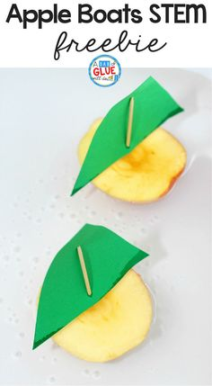 This Apple Boats STEM Activity is a simple, hands-on way for children to test if apples float and learn about buoyancy and density. Stem Learning, Kids Learning Activities, Toddler Activities, Teaching Ideas, Montessori Toddler, Toddler Play, Science Activities, Family Activities, Kindergarten Freebies