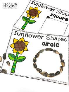 Make Sunflower Shapes & Practice FINE MOTOR Skills! -Fall Kindergarten Morning Tubs