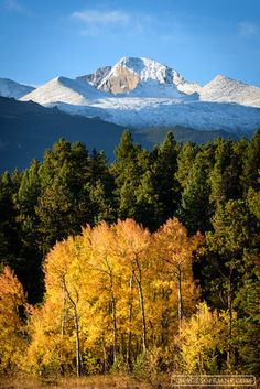 1. YEAR,2. MONTH,2015,3. SEASONS,4. LOCATION,8. SUBJECTS,america,aspen,autumn,beaver meadows,colorado,entrance,events,longs peak,mountain,october,rmnp,rocky,rocky mountain national park,tree,united st