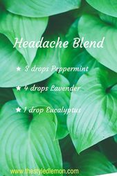 My favorite essential oil diffuser blends. Headache and migraines. Eucalyptus lavender and peppermint essential oil blend - Essential Oil Diffuser - Ideas of Essential Oil Diffuser Essential Oils For Headaches, Essential Oil Diffuser Blends, Doterra Essential Oils, Young Living Essential Oils, Migraine Essential Oil Blend, Lemon Essential Oil Benefits, Lavender Oil Benefits, Essential Oils Room Spray, Calming Essential Oils