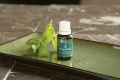 Put a drop of peppermint on your tongue to freshen your breath!
