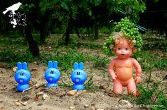 Ici pas question de complanter, on plante des baby vignes au GPS !  vines & babies