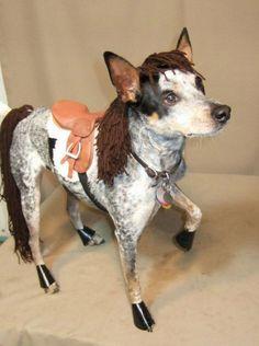 Dog Horse Costume