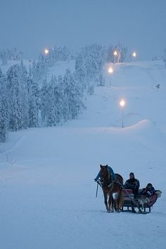 Before I die, I would love to take a sleigh ride in the snow with a horse drawn carriage. A truly amazing winter wonderland.