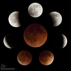 Lunar Eclipse Composite Series from Tucson, Arizona Can't remember when I've stayed up all night, but watching this event was rewarding enough to make it worth it. Images taken every 30 minutes for duration of eclipse.
