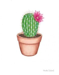 Cactus with flower watercolor art print. This is a print of my original watercolor painting. Adorable succulent plants in a te Cactus Painting, Plant Painting, Watercolor Cactus, Plant Drawing, Cactus Art, Cactus Flower, Watercolor Art, Cactus Plants, Painting Art