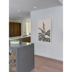 "Bay Isle Home 'Feuilles De Palmier' Framed Photographic Print Size: 30"" H x 20"" W"