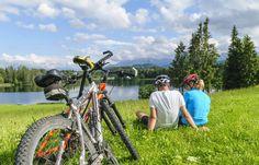Die Eifel, Graf, Sport, Bicycle, Recovery, Woodland Forest, Bicycle Kick, Bike, Trial Bike