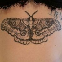 Moth tattoos - Page 2 - Tattooimages.biz