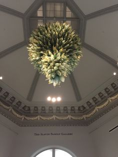 Dale Chihuly at the Renwick Gallery DC