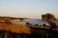Meschers depuis la formidable Pointe de Suzac #saintgeorgesdedidonne #estuaire #parcdelestuaire #suzac #falaise #royan #mer #ocean #sea #charentemaritime