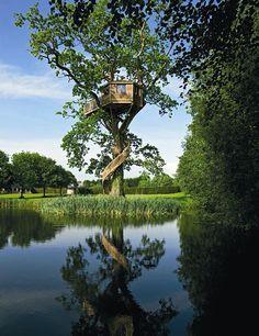 IL GIARDINO SFUMATO: casa sull'albero