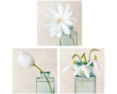 White Flower Photo Set Botanical Print Set by RockyTopPrintShop
