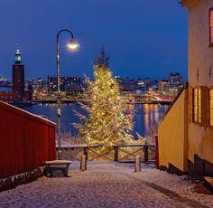 Monteliusvägen, Stockholm (Södermalm)