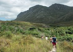 What makes Betty's Bay the perfect holiday destination? All you need to find the answer is a pair of comfortable hiking shoes.