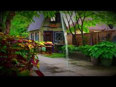 VIDEO: My four DIY fountains