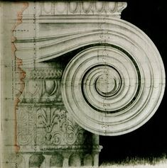 Quinlan & Francis Terry Architects - Royal Academy drawing.