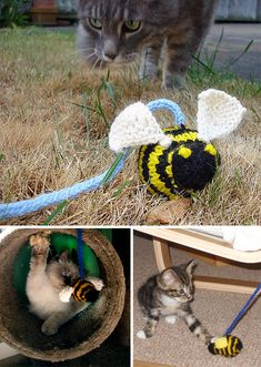 Free Knitting Pattern for Bumble Cat Toy - A knit bee on a cord to amuse the kitties. Many Ravelrers said it was their cat's favorite toy. Designed by Christine Landry. Pictured projects by teekay, pryorjennie, and R-girl. Crochet Dog Sweater, Knitted Cat, Knitted Animals, Knitting Patterns For Dogs, Loom Knitting Projects, Free Knitting, Small Dog Coats, Bee Toys, Cat Sweaters