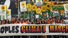 London, Cairo, other cities also see large turnout in support of action on climate change ahead of UN Climate Summit